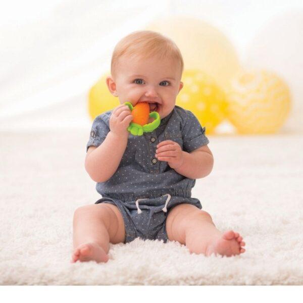 Μασητικό Infantino Good Bites Carrot Teether